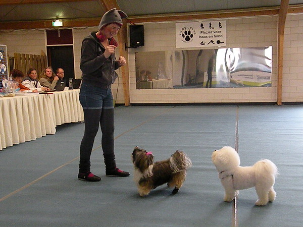 Dogdance-wedstrijd 19 maart 2017 (foto's Debbie Janszen)