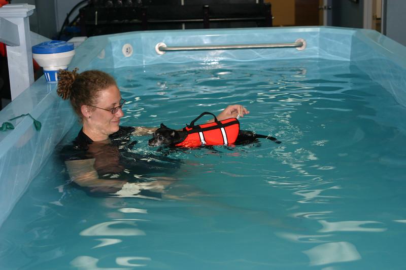 IMG_2675GuidedSwim.JPG