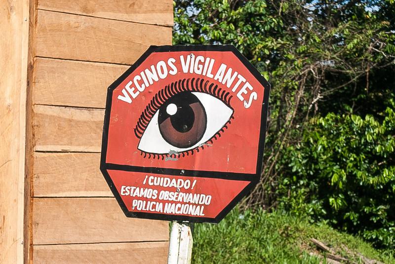 Urari, Panama-15.jpg
