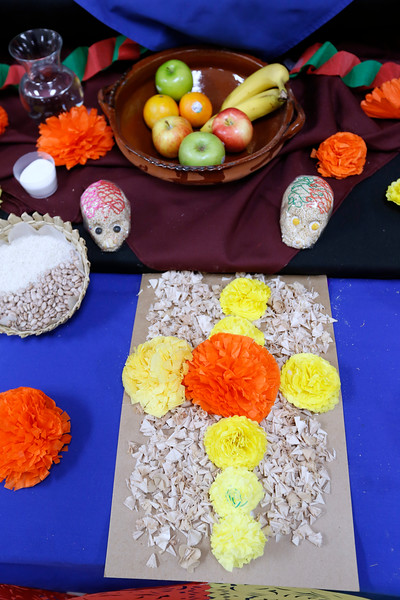110118BrownMS-DayOfTheDead199 copy.JPG