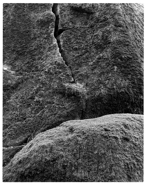 Odenwald005.jpg