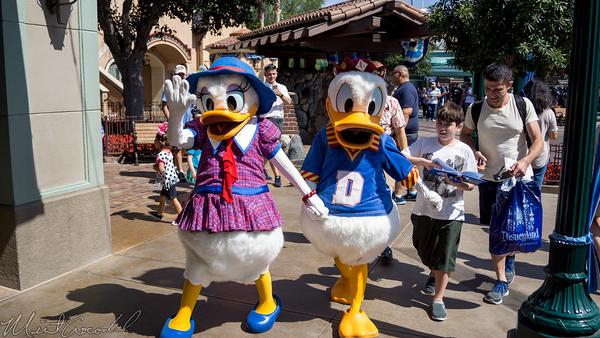 Disneyland Resort, Disneyland, Disney California Adventure, Buena Vista Street, Donald, Daisy, Duck