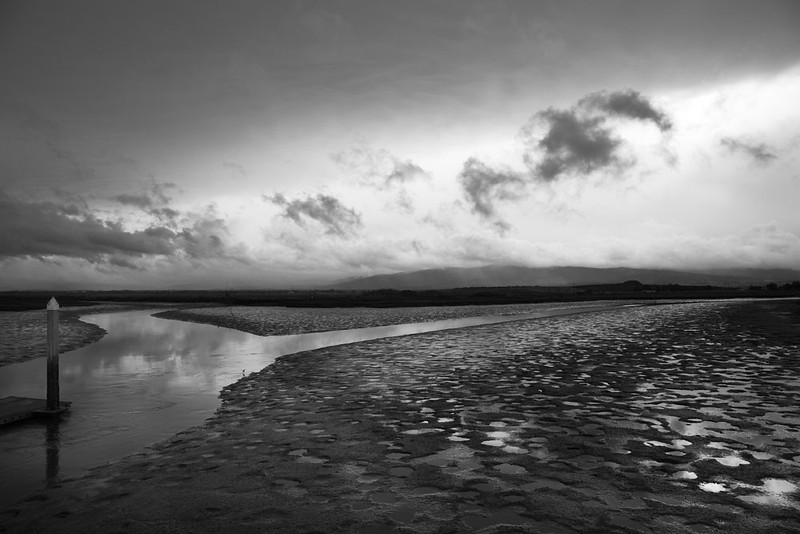 Baylands Nature Preserve