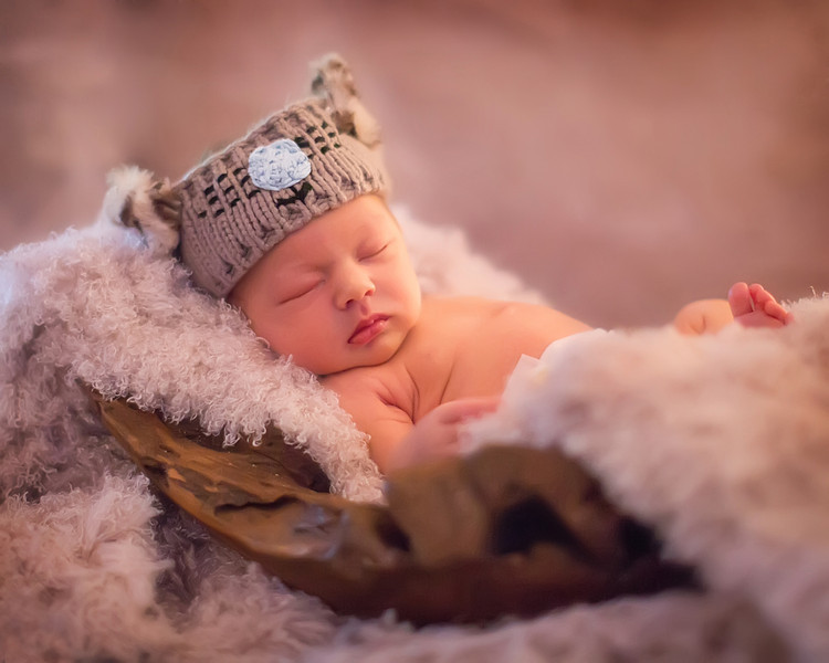 newborn_photographer_parris_photography.jpg