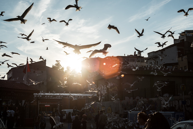 Turkey-15.jpg