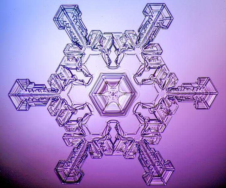 snowflake-0276-Edit.jpg