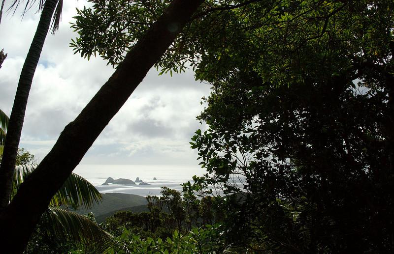 Lord Howe20080509 120851.jpg