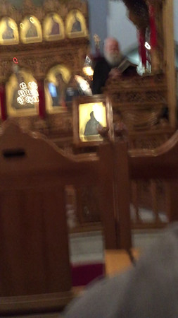 01.17.16 Suffering, Sunday before Theophania by Father Nektarios