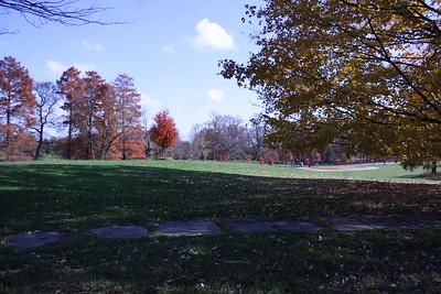 Druid Hill Park-Oct 2014