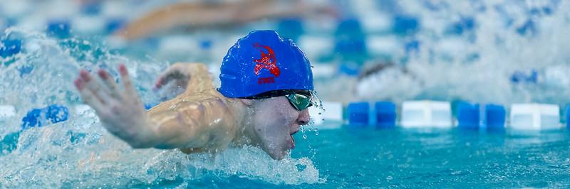 2018_KSMetz_Feb16_SHS Swimming_ State Prelims_NIKON D5_3570.jpg