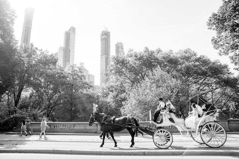 Central Park Wedding - Lubov & Daniel-16.jpg