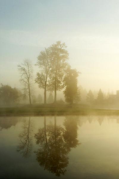 Morning misti-fication