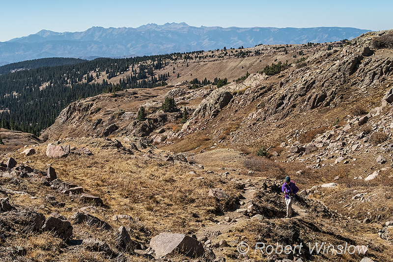 Mountain View Crest Hike