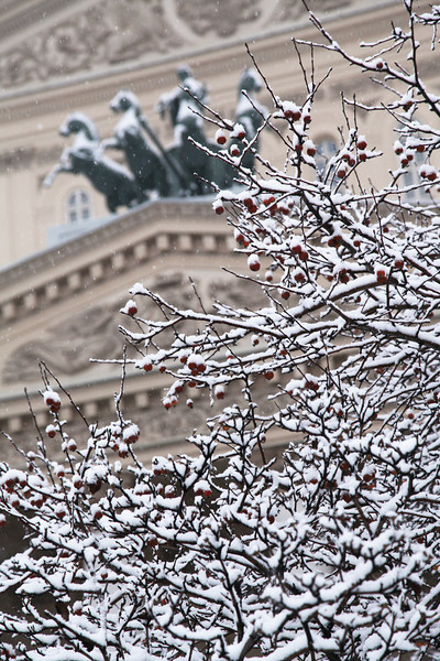 Bolshoi Theatre detail, Moscow, Russian Federation