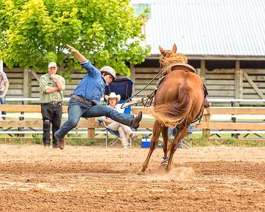 2015 Washington County Sheriff's Posse SC Show July 25