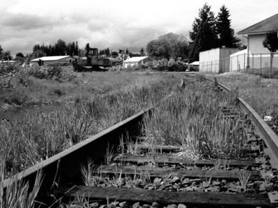 Oregon Coast May 2013