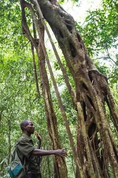 Uganda_GNorton_03-2013-520-3.jpg