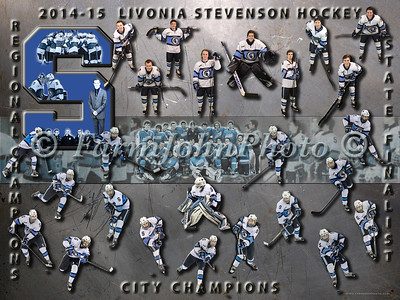 Livonia Stevenson Team Collage Review