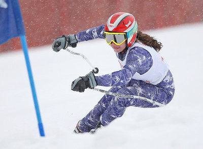 HS Alpine Skiing