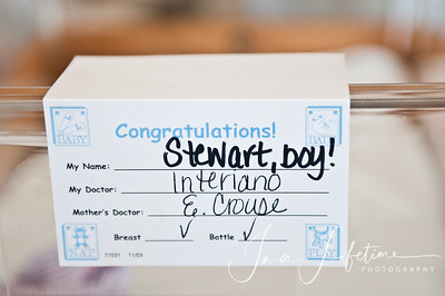 Young Mr Stewart