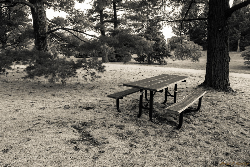 Picnic Seating