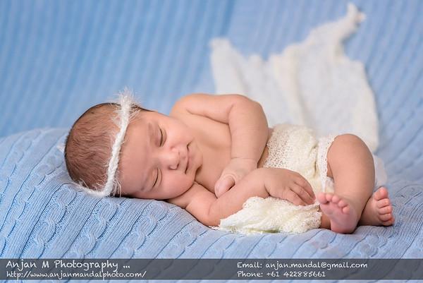 Asher's Newborn Shoot