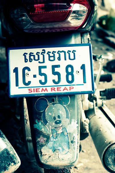 mickey_3021280620_o.jpg