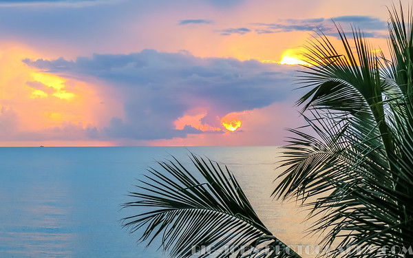 Treasure Coast Florida 7-15-16
