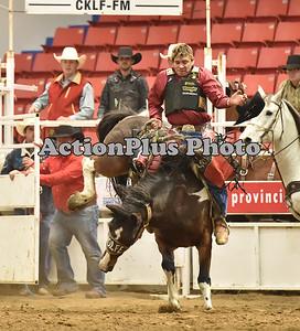 2015 MF Saddle Bronc