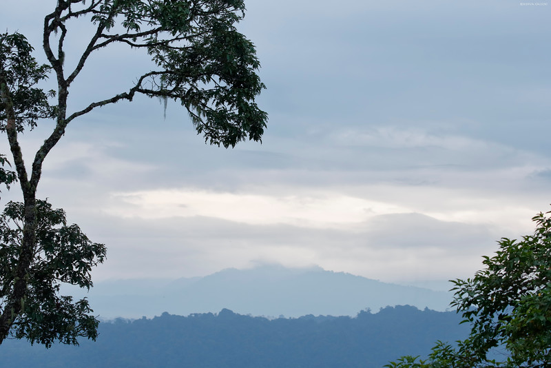 Lookout from Wildsumaco Lodge