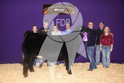 Cleveland County Jr. Livestock Show