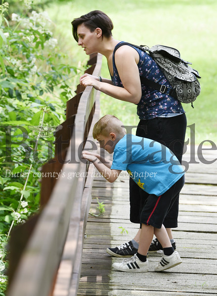 Harold Aughton/Butler Eagle: Joanna Webb of Meridian, and her son, Elliottt, 6, enjoyed identfing dragpmflies, butterflies and sunfish while on their walk through Preston Park, Monday afternoon.