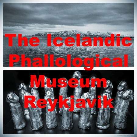 The Icelandic Phallological Museum, Reykjavik
