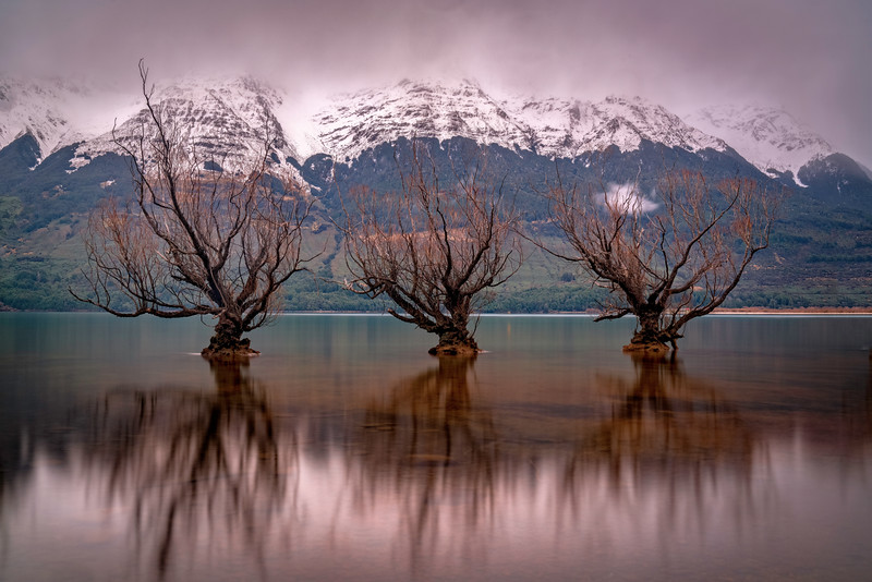 Glenorchy Willows and Alps