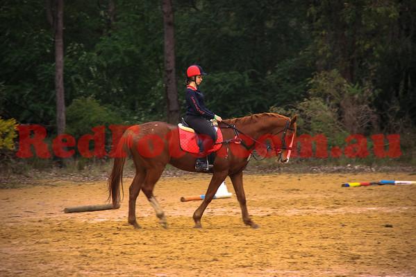 2014 07 27 Darlington Pony Club Rally July