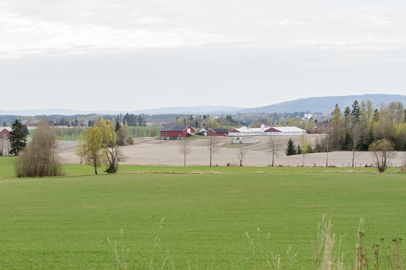 Store Flatby gård