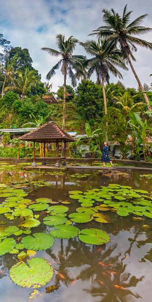 Bali (82).jpg