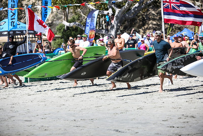 Festival of the Whales 2014