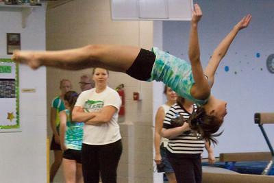 Gymnastics Meets