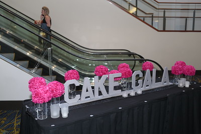 The 2018 BEACON OF LIFE CAKE GALA Entire / Unedited Gallery ... 10/18/2018