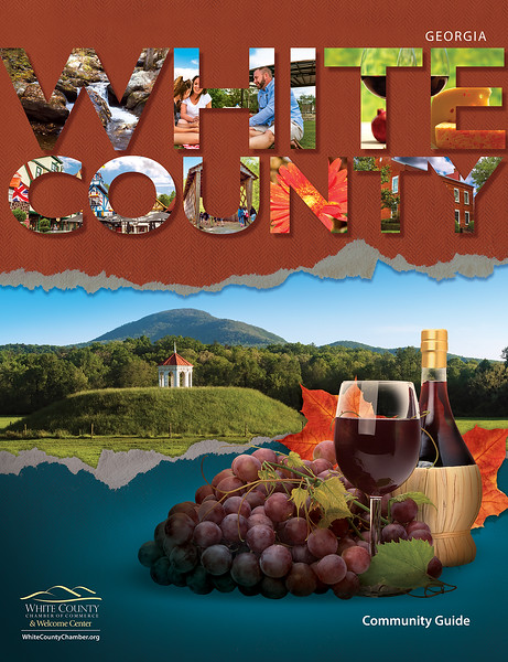 White County NCG 2017 - Cover (5).jpg