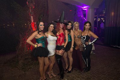 Pied Piper's Helloween 11 10/24/14