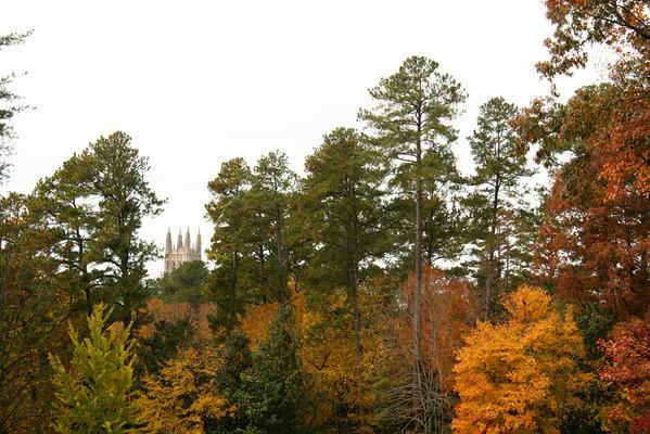 Fall at Duke Gardens