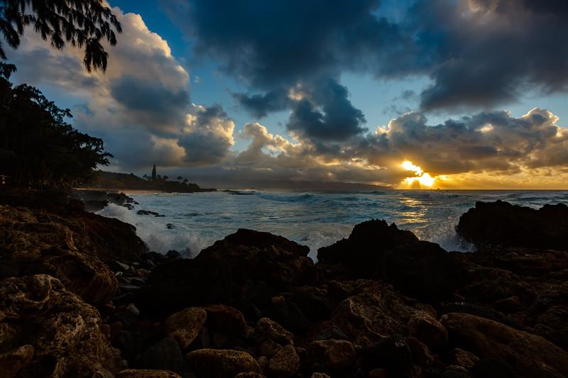 2020 02/11: To Turtle Bay Resort and Hale'iwa
