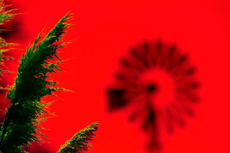 Molino verde rojo