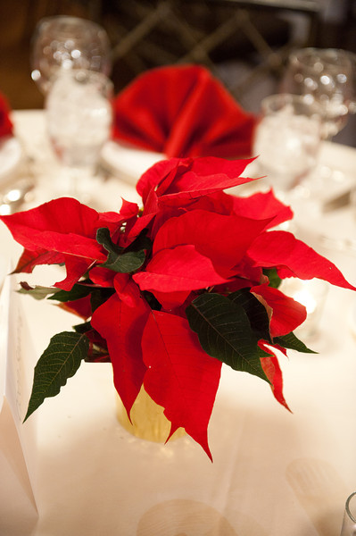 December 3, 2011 Washington D.C. Holiday Reception