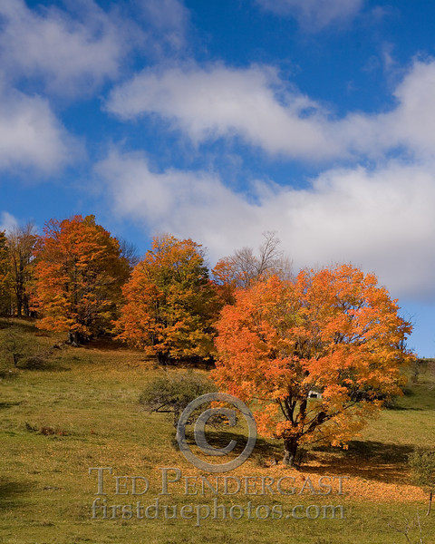 Vermont - Fall 2008