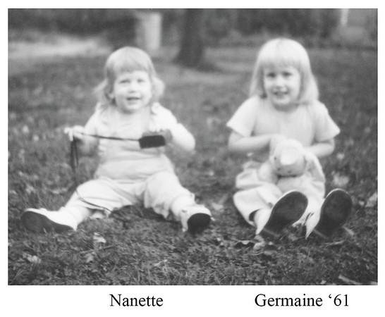 Schweibinz up to 1970
