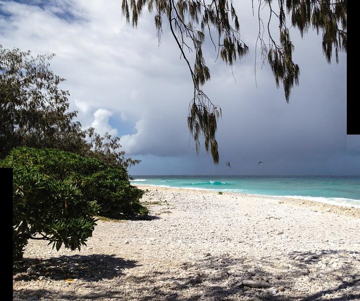 09. Lady Elliott Island-1086.jpg