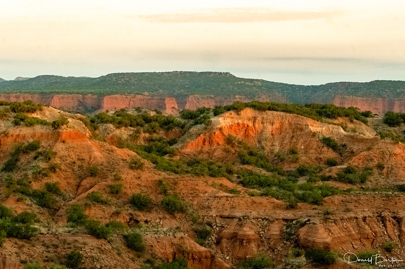 Caprock Canyon Vista